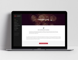 Website Design L&S Advisory Capabilities